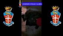 Rosarno (RC) - Scoperto un bunker in un'abitazione della famiglia Mulè (28.02.15)