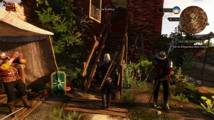 Witcher 3 Wild Hunt - Your Qs Answered de