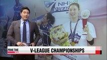 V-League: IBK vs. Korea Expressway