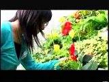 ショートフィルム[ALICE(アリーチェ) -in flowers-]