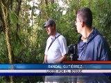 Locos por el Bosque le ofrece un paseo por la naturaleza para disfrutar de este ambiente en vacaciones