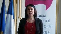 Sylvia Pinel, Ministre du Logement, de l'Égalité des territoires et de la Ruralité