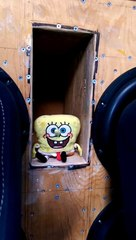 Spongebob bass pants