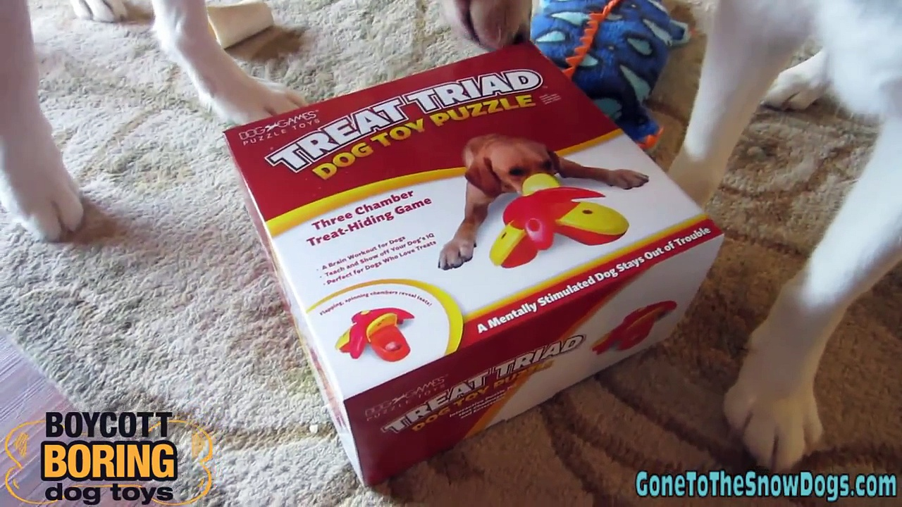 Treat Triad Puzzle Toy – Kyjen – Siberian Husky Approved – Boycott Boring Dog Toys