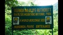 EXCLUSIVITÉ: LA NEIGE AU CONGO (SKI A LA MONTAGNE RUWENZORI)