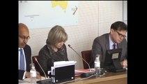 Intervention d'H. Désir à l'Assemblée nationale pour son audition post-Conseil des ministres franco-allemand du 31 mars 2015