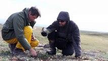 SCREA: La science dans le Nord par le Nord