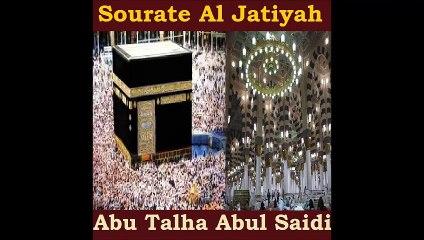 Sourate Al Jatiyah - Abu Talha Abul Saidi