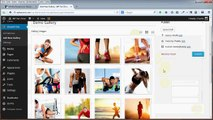 Review and Demo of SharePrints Gallery Plugin for WordPress
