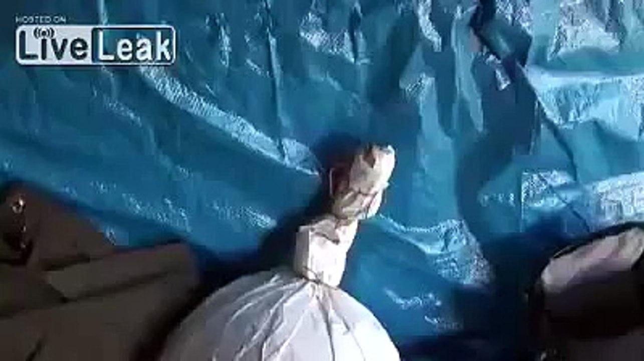LiveLeak - Crazy firework bomb in germany