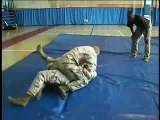 COMBATIVES: Daegu Soldiers make contact