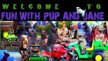 Crazy Dog vs Dog Races! - Fun with Pup and Jane