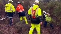 Lost Australian boy found alive after five days in bushland
