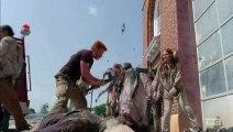 The Walking Dead Saison 5 Compilation des morts