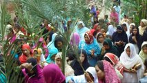 Palm Sunday Celebrates with Branches of Palm 2015