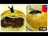 Bouffe asiatique bizarre: C'est un régal, c'est innovant, c'est un gâteau de lune.