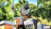 Lauréat Agriculteur Talents Gourmands Crédit Agricole Atlantique Vendée 2014