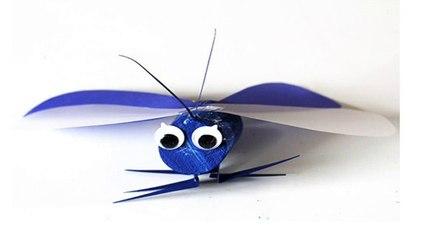 petit papillon bouchon