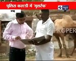 Indian Media Gone Mad on Spy Camel Sent by ISI