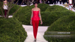 Fashion Week CHRISTIAN DIOR Paris Haute Couture Spring Summer 2013