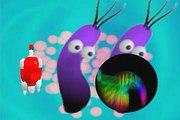 Pílulas de Ciência - Resistência a antibióticos