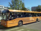 Autobuze/troleibuze din Baia Mare - Maramures
