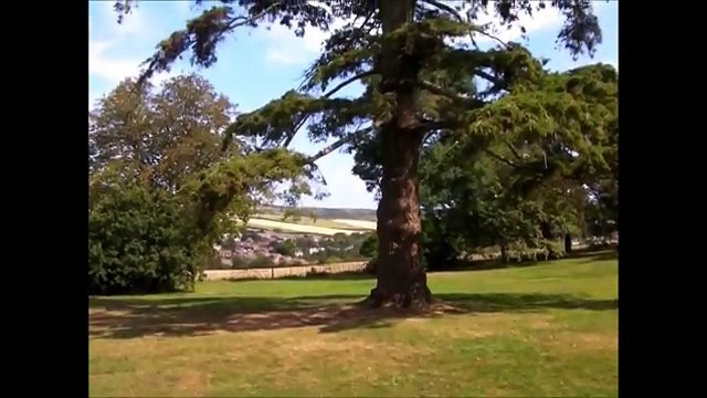 Julian and Julie's Day Out - Appuldurcombe House on the 30th July 2014