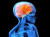 Que nous apprennent les neurosciences sur les états modifiés de conscience ?