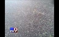 Hail rains down in various parts of Ahmedabad - Tv9 Gujarati