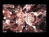 Resident Evil Zero & Resident Evil (remake) - Preliator by Globus