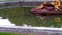 I giardini di Versailles ( le jardin de versailles )