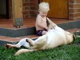 bebe y su perro labrador 2