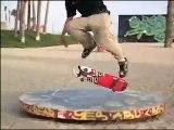 Rodney Mullen I Love to Skateboard