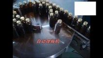 Máy vô hộp đóng gói chai dầu tự động/ máy vô hộp chai tự động/ máy đóng gói chai lọ tự động vào hộp