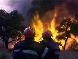 Sapeurs-Pompiers - Feux de forêt