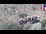 Brutalna policja: podejrzany ucieka na koniu i zostaje pobity przez policjantów