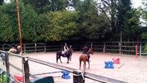 ecuriedurailly,saut,obstacles,leçon,equitation,meuse,55230,cheveaux,poneys