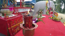Chinese New Year 2015 in Koh Chang Temple