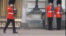 La chute spéctaculaire d'un garde de la Reine d'Angleterre à Buckingham Palace.