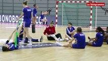 Brest. Les bleues handballeuses en stage