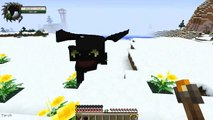 Minecraft   HOW TO TRAIN YOUR DRAGON 2   18 'Final Competition Day!'