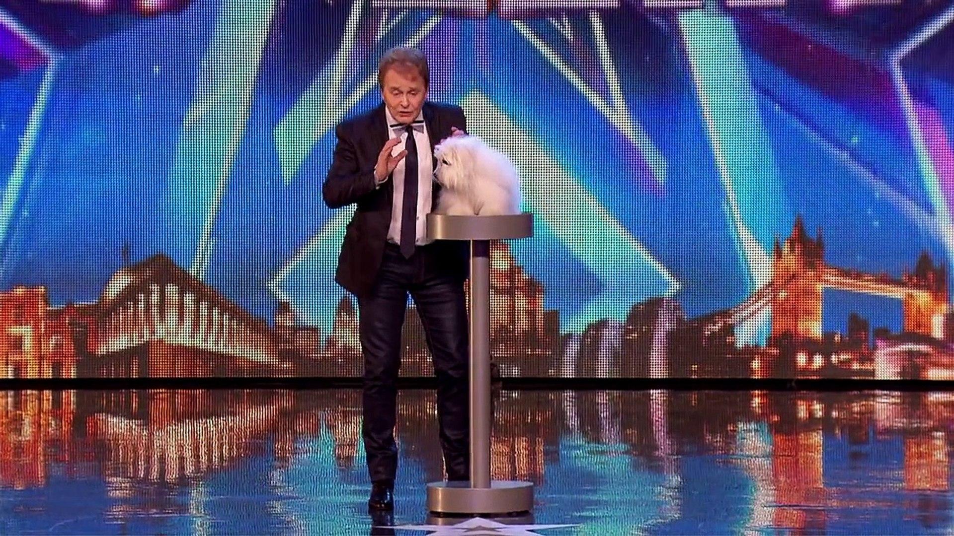 Cadela Que Fala E Canta Impressiona Todos No Britain's Got Talent