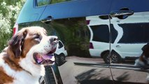 """""""It Isn't So Bad"""" Music Video 