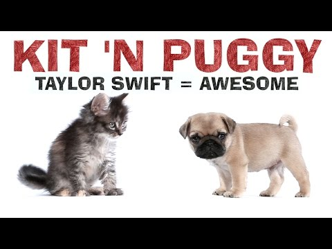 Taylor Swift – 1989 – Kit 'N Puggy