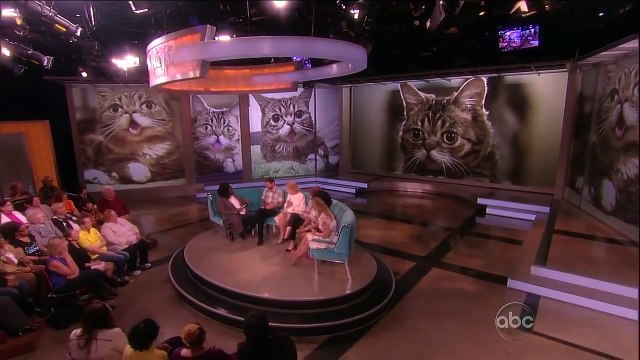 """Lil Bub Visits """"The View""""! - The View"""