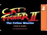 Street Fighter Parody - Cat Fighter