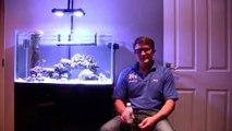 Phytoplankton, Rotifers & Copepods
