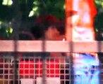 Vidampark 2008 - Looping Star