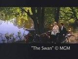"""""""The Swan"""" 1956, Grace Kelly, Louis Jourdan, Clip #3"""