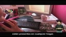 Teledislab: Inserción laboral para mujeres con discapacidad
